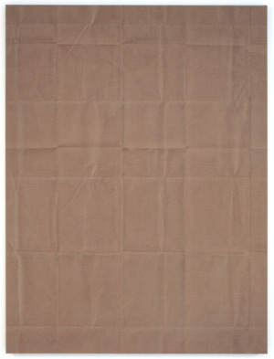Tauba Auerbach, Untitled Fold Painting II…Acrylic on canvas, 60 x 45 inches, 2009